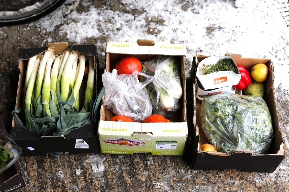 Ужесточение наказания за незаконно выброшенный мусор поддерживают 43% жителей