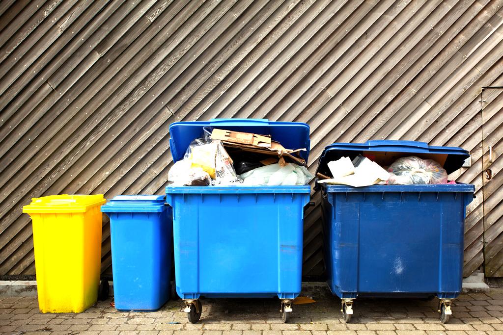 Коалиция решила, что самое время обсудить бытовые отходы