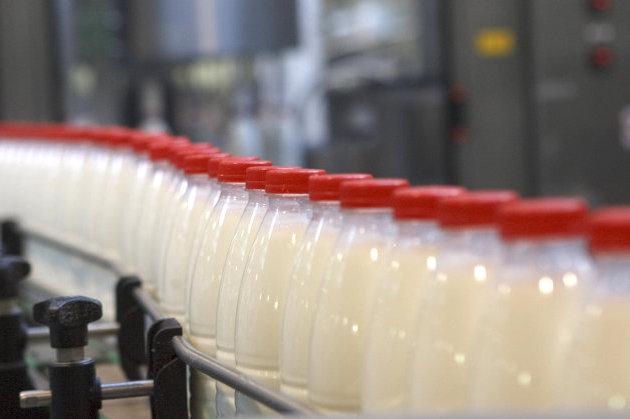 Латгальские молочники не уверены в будущем