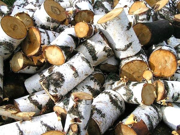 Зимой чаще всего крадут… дрова
