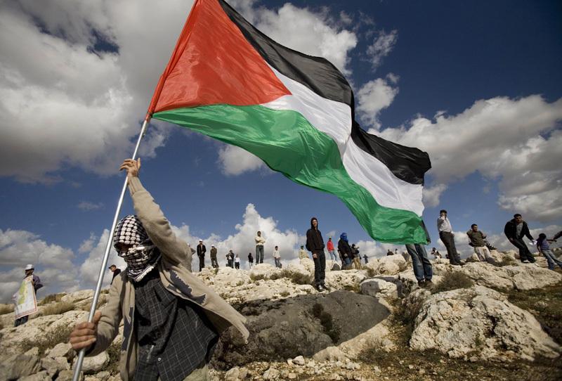 Парламент Франции проголосовал за признание Палестины государством
