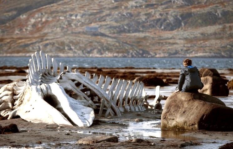 Бизнесмен купил скелет кита из «Левиафана»