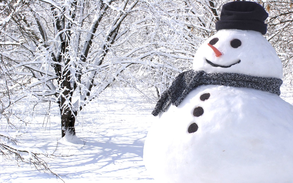 Больше всего снега в Алуксне — 26 см