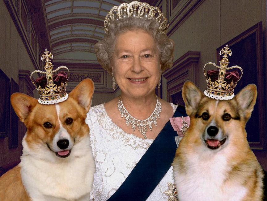 Елизавета II отказалась от любимых собак